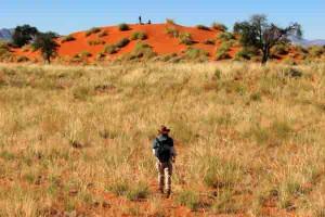 Afrika Erfahren, Namibia, Tok Tokkie Wanderung