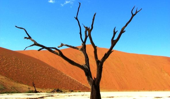 Afrika Erfahren, Namibia Selbstfahrer Rundreise, Sossusvlei