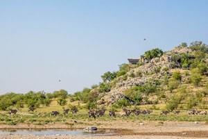 Afrika Erfahren, Namibia Rundreise Selbstfahrer, Etosha Nationalpark, Dolomite Camp vom Wasserloch