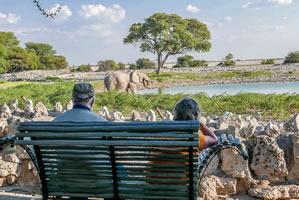 Afrika Erfahren, Namibia Rundreise Mietwagen, Etosha, Okaukuejo Wasserloch