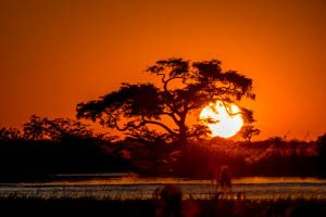 Afrika Erfahren, Botswana Safari, Okavango Delta, Sonnenuntergang
