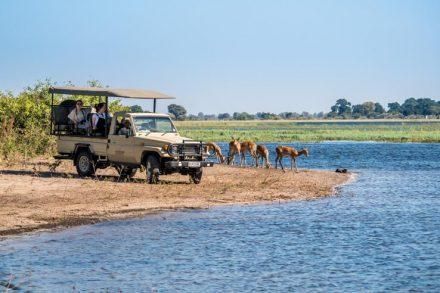 Namibia und Botswana - Als Selbstfahrer rund ums Okavango Delta