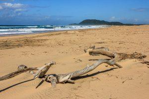 Afrika Erfahren, Südafrika, Mietwagenreise, St Lucia Strand