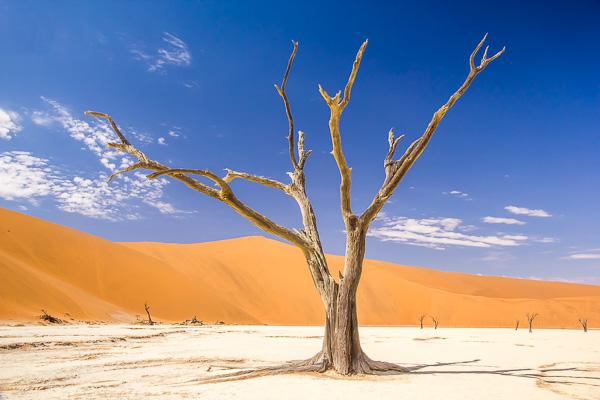 Afrika Erfahren, Namibia, Selbstfahrerreise, Deadvlei