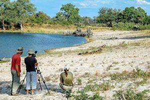 Afrika Erfahren, Botswana, Selbstfahrerreise, Fotografieren