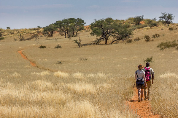 Afrika Erfahren, Namibia, Selbstfahrer Rundreise, Wandern