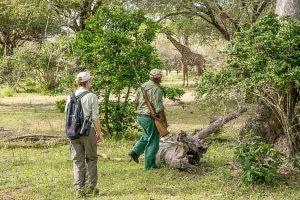 Afrika Erfahren, Namibia, Selbstfahrerreise, Safari zu Fuss