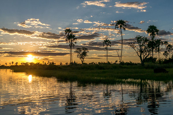 Afrika Erfahren, Botswana, Selbstfahrer Rundreise, Sonnenuntergang am Khwai