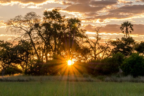 Afrika Erfahren, Botswana, Selbstfahrer Rundreise, Sonnenuntergang, Okavango Delta