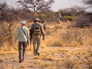 Selbstfahrer Namibia Corona, Onguma, Buschwanderung