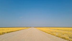 Selbstfahrer Namibia Corona, Etosha, Strasse, Afrika Erfahren