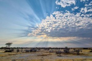 Namibia, Rundreise, Selbstfahrer, Corona Zeiten