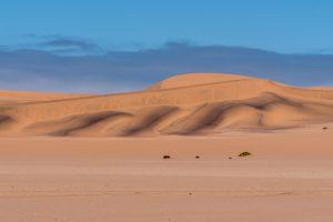 Namibia, Selbstfahrer, Corona-Zeiten, Wüste