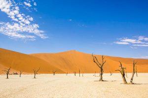 Namibia Mietwagen Rundreise Corona, Sossusvlei, Dead Vlei, Afrika Erfahren