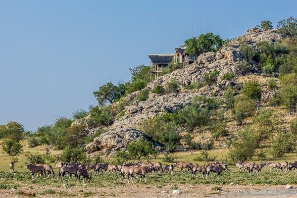 Selbstfahrer Rundreise, Selbstfahrer Reisen Namibia, Mietwagenrundreise Erfahrungen, mietwagenreise, mietwagenrundreisen, Etosha, Dolomite Camp